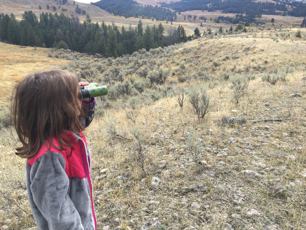 Child with binoculars looking over Yellowstone